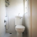 Lovely  Modern Small Bathroom Designs with Shower Stall Picute , Charming  Contemporary Small Bathroom Designs With Shower Stall Image Inspiration In Bathroom Category