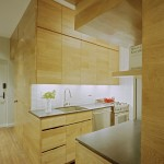 Lovely  Modern Small Kitchen Cabinet Image Ideas , Beautiful  Traditional Small Kitchen Cabinet Photos In Kitchen Category