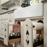 Stunning  Traditional Kitchen Cabinets Storage Solutions Picture , Lovely  Contemporary Kitchen Cabinets Storage Solutions Photos In Kitchen Category