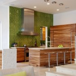 Wonderful  Contemporary Kitchen Cabitnets Picture Ideas , Beautiful  Contemporary Kitchen Cabitnets Photo Inspirations In Kitchen Category